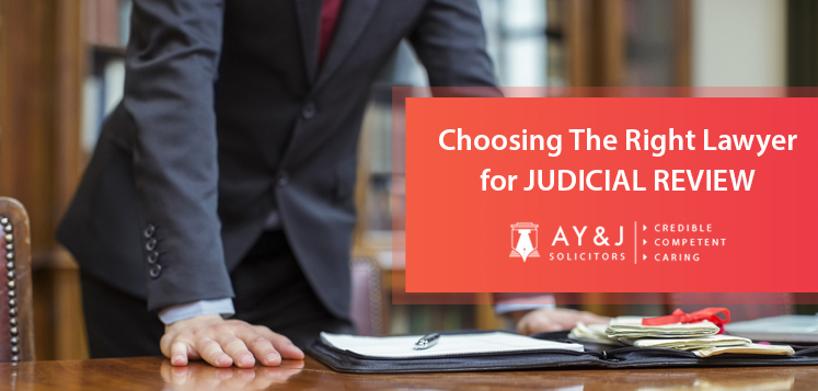 Choosing the Right Lawyer for Judicial Review